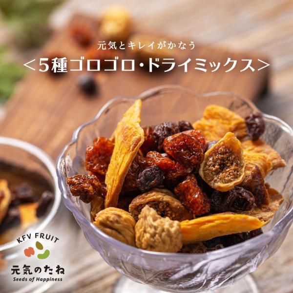 5種 ゴロゴロ ドライミックス 300g 送料無料 ノンオイル 無添加 ドライフルーツ 砂糖不使用