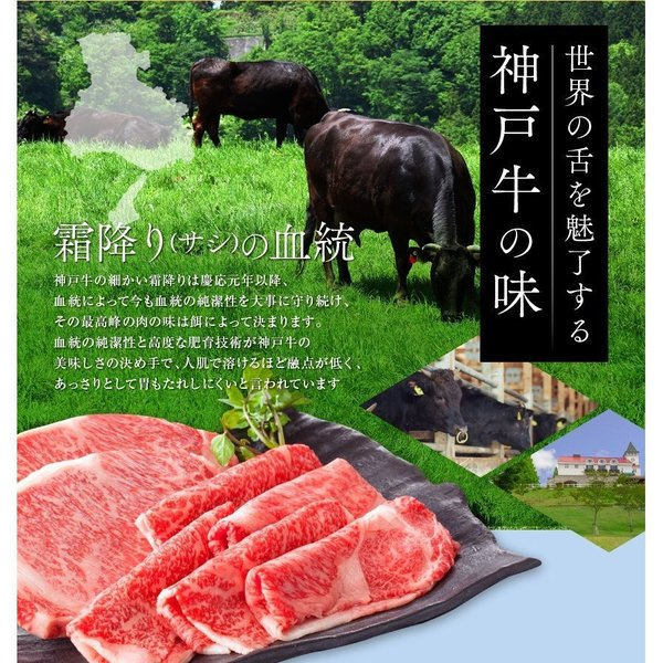 神戸牛 牛肉 A5等級 極撰クラシタローススライス 500g 250g×2パックでお届け お取り寄せ グルメ ギフト|kien-store|03