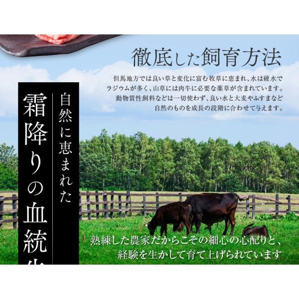 神戸牛 牛肉 A5等級 極撰クラシタローススライス 500g 250g×2パックでお届け お取り寄せ グルメ ギフト|kien-store|04
