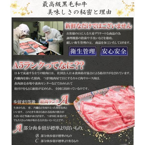 神戸牛 牛肉 A5等級 極撰クラシタローススライス 500g 250g×2パックでお届け お取り寄せ グルメ ギフト|kien-store|06