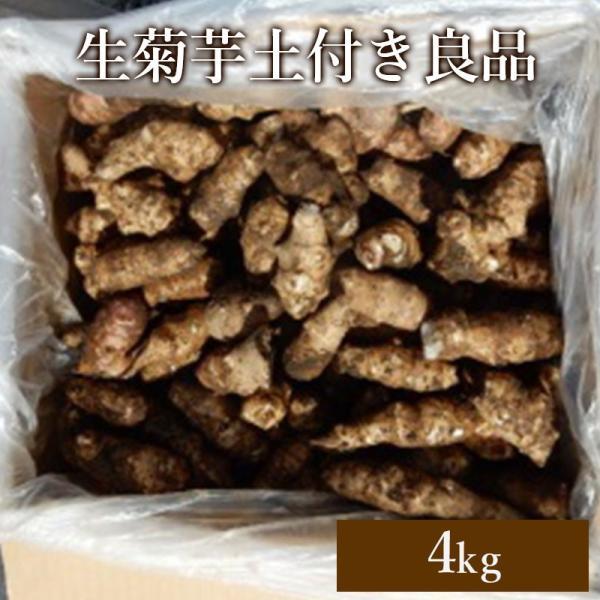 生菊芋土付き良品4kg|kikuimohonnpo