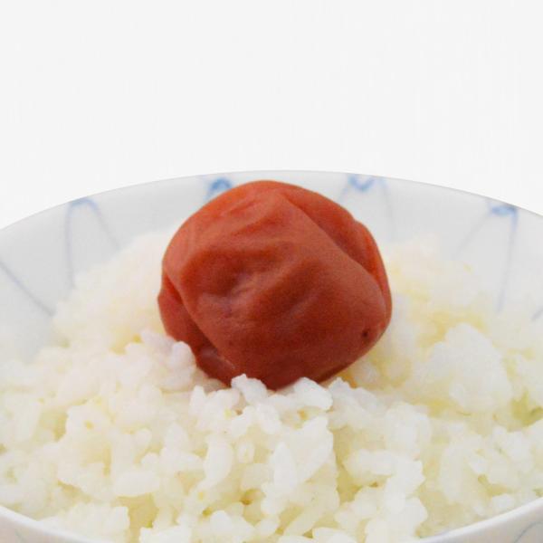 梅干し 南高梅 紀州 しそ梅 しそ漬け 160g ご飯に梅干|kikutayakitchen|03