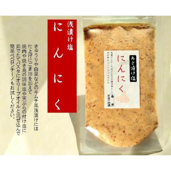 にんにく 塩 新発売簡単・便利浅漬け塩 にんにく 100g袋 塩 にんにく 浅漬けの素 浅漬け塩 にんにく塩 ペペロンチーノ