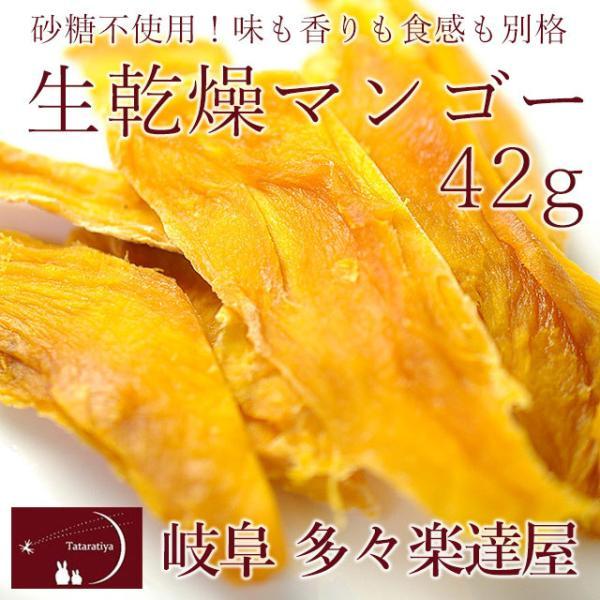 岐阜 多々楽達屋 生乾燥マンゴー42g ドライフルーツ 砂糖不使用 たたらちや 生乾燥南アフリカ産マンゴー クール冷蔵便