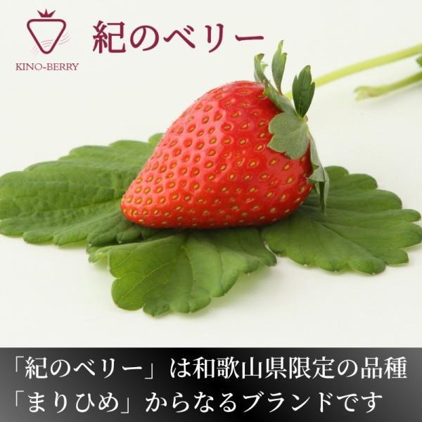 いちご まりひめ ギフト 贈答用 [送料無料] 和歌山県産 紀のベリー(ゴールド)|kino-farm|02
