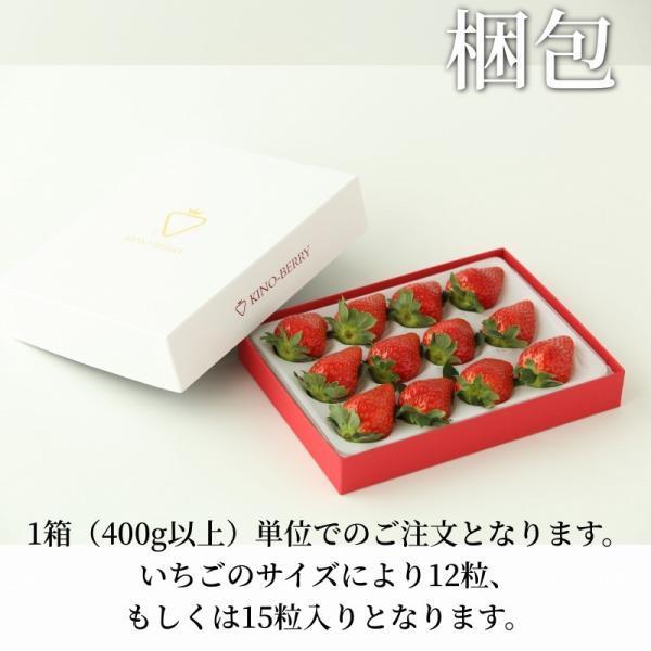 いちご まりひめ ギフト 贈答用 [送料無料] 和歌山県産 紀のベリー(ゴールド)|kino-farm|05