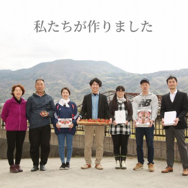 いちご まりひめ ギフト 贈答用 [送料無料] 和歌山県産 紀のベリー(ゴールド)|kino-farm|10