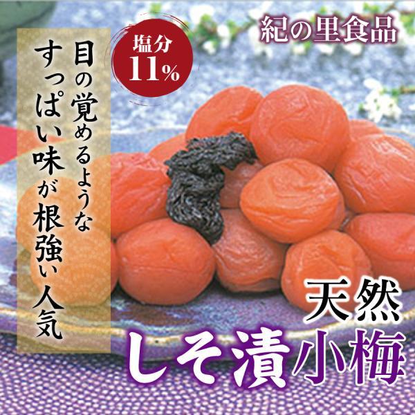 梅干し しそ漬小梅 500g 紀の里食品 梅干 南高梅 うめ すっぱい しそ ギフト 贈答 産地直送 和歌山 紀州産