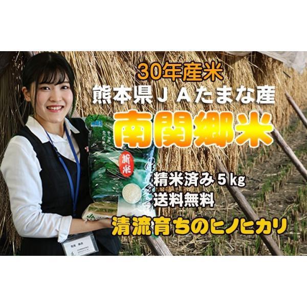 【送料無料】熊本県玉名産ヒノヒカリ5k入り☆令和2年産☆新米☆|kiramekitamana