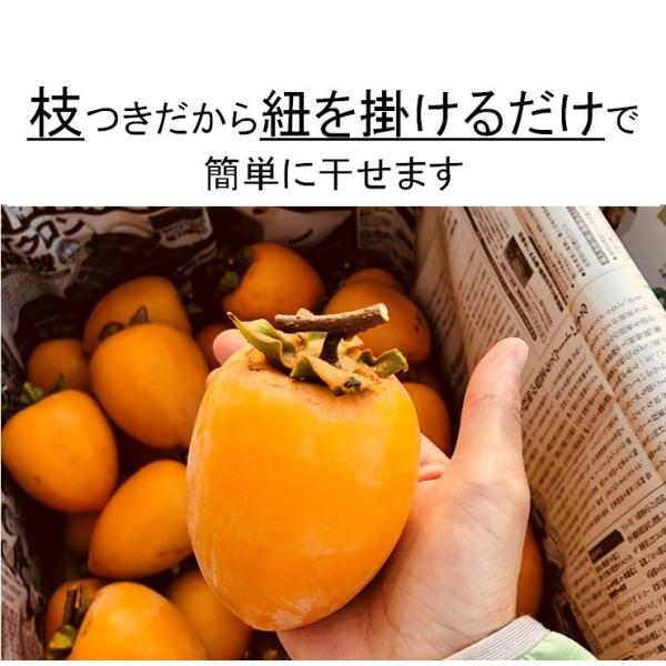 柿 干し柿用つるし柿 愛宕柿 枝つき 約4kg入り 農家直送 愛媛県産 11月中旬発送開始予定|kirari-fruits-farm|06