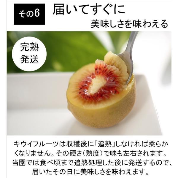 キウイフルーツ レインボーレッドキウイ 赤いキウイ デイリーレインボー レギュラーサイズ 約2k入り 農家直送 愛媛県産 11月中旬発送開始  kirari-fruits-farm 10