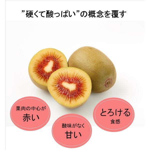 キウイフルーツ レインボーレッドキウイ 赤いキウイ デイリーレインボー レギュラーサイズ 約2k入り 農家直送 愛媛県産 11月中旬発送開始  kirari-fruits-farm 04
