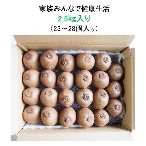 キウイフルーツ グリーンキウイ ヘイワード 約2.5kg入り 23〜28個入り 農家直送 愛媛県産|kirari-fruits-farm|04