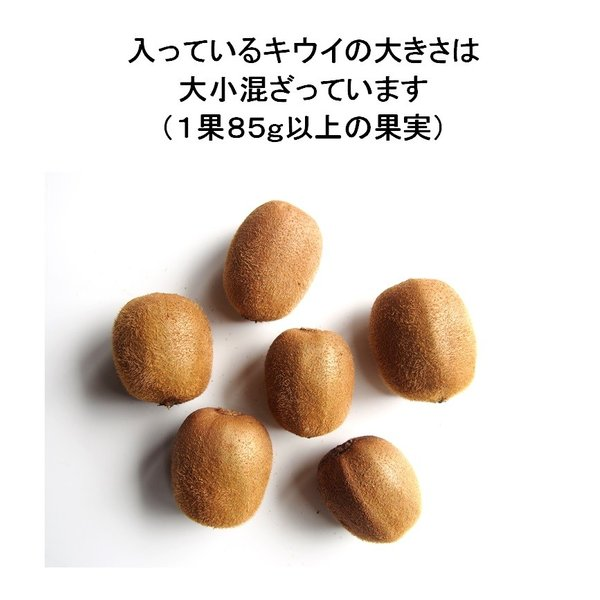 キウイフルーツ グリーンキウイ ヘイワード 約2.5kg入り 23〜28個入り 農家直送 愛媛県産|kirari-fruits-farm|05