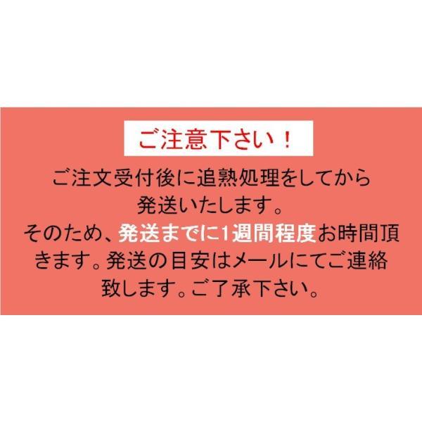キウイフルーツ プレミアムグリーン ヘイワード 大玉9個入り ギフトBOX 農家直送 愛媛県産|kirari-fruits-farm|12