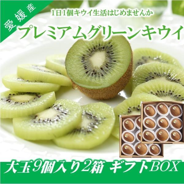 キウイフルーツ プレミアムグリーン ヘイワード 大玉18個入り ギフトBOX 農家直送 愛媛県産 kirari-fruits-farm