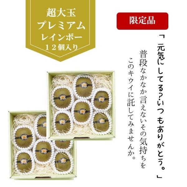 キウイフルーツ レインボーレッドキウイ 赤いキウイ プレミアムレインボー ギフト お歳暮 10個入り 農家直送 愛媛県産 11月中旬発送開始 |kirari-fruits-farm|02