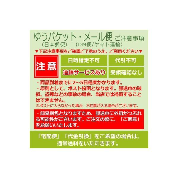 西倉式水素SPA elastique(エラスティーク) 浴用化粧料 1包40g / メール便対応|kireineshop|02