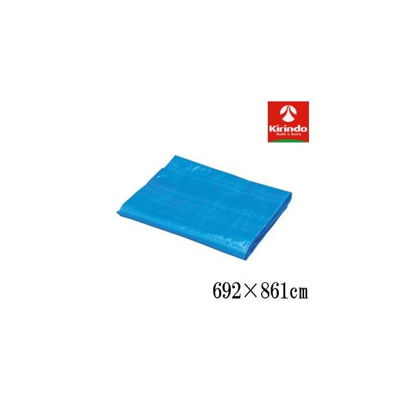 品薄の為、納期随時確認必要 アイリスオーヤマ ブルーシート #1000 B10-7290 雨よけ 養生品薄の為、