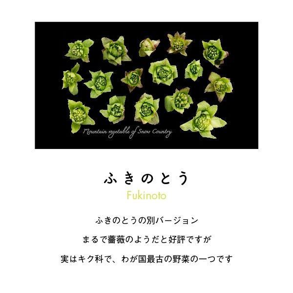 ふきのとうパーカー ブラック|kiru-sansai|02
