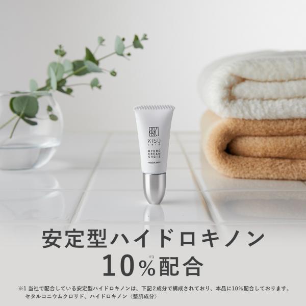 クリーム ハイドロキノン クリーム 安定型 ハイドロキノン 10%配合 ハイドロ クリーム SHQ-10 6g 日本製 送料無料