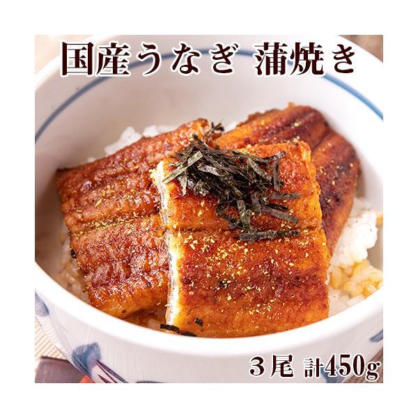 うなぎ 蒲焼き 3尾 合計約450g タレ 山椒粉 刻み海苔 お吸い物付き 国産 送料無料 日本グルメ ギフト 贈り物 プレゼント 鰻