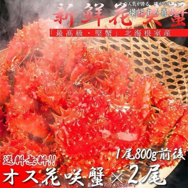 (送料無料)北海道産 花咲蟹 根室 (カニ かに 蟹 鍋セット)特大2尾オス|kitabisyoku