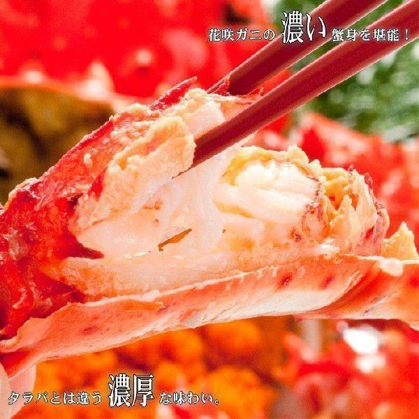 (送料無料)北海道産 花咲蟹 根室 (カニ かに 蟹 鍋セット)特大2尾オス|kitabisyoku|03