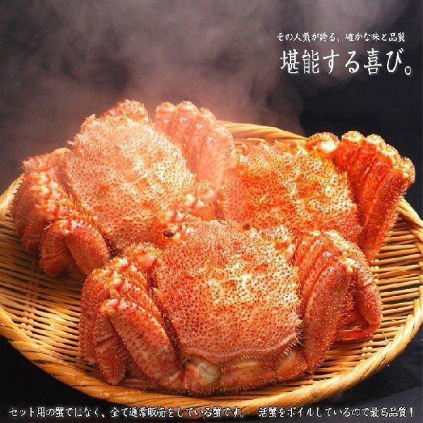 カニ 海鮮  (セット 食べ比べ ギフト 福袋)カニ(ずわい 毛ガニ いくら 干物)鍋セット約1.5kg(海鮮セット 浪の舞★漁火) kitabisyoku 05