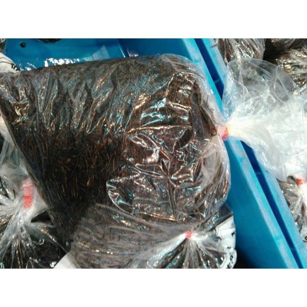 〔今が旬〕北海道函館産生ふのり1kg☆北港直販☆ノリ・海苔〔同梱不可〕|kitachokuhan|02