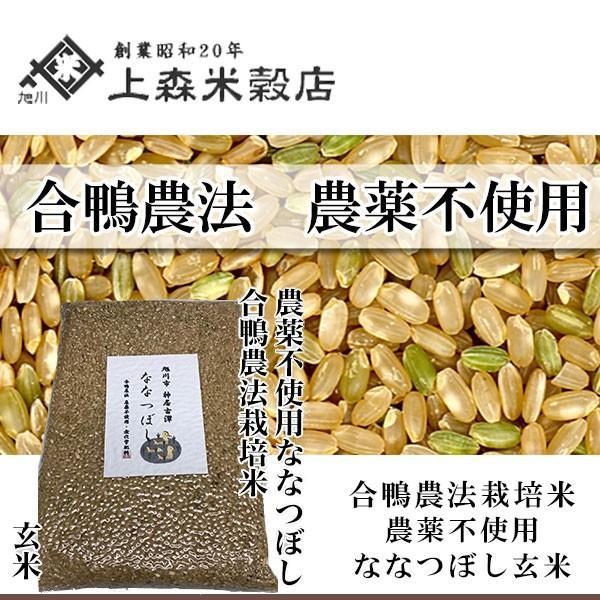 合鴨農法米ななつぼし 玄米 1kg 北海道産 農薬不使用玄米 真空パック対応 【旭川 上森米穀店 】