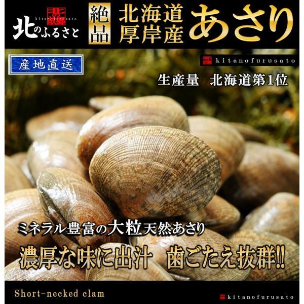北海道厚岸産 中サイズあさり 2kg 【産地直送】 アサリ 貝|kitanofurusato-tda