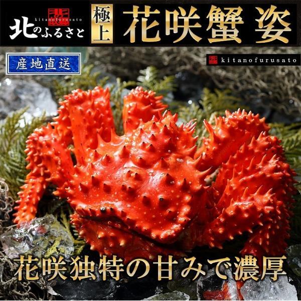 北海道根室産 「極上」 花咲蟹 1.0kg前後 ボイル冷凍3尾(オスメス無選別)かに・カニ・蟹 【産地直送】  |kitanofurusato-tda