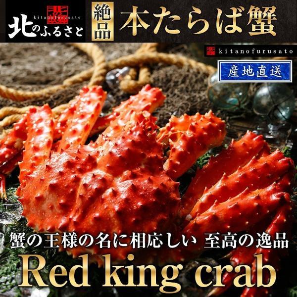 北海道 本 タラバガニ 姿 3.2kg前後 急速冷凍 たらば かに 蟹 カニ タラバ 北海道 道産 タラバ蟹 たらば蟹 BBQ お祝い 贈り物 ギフト 父の日 お中元