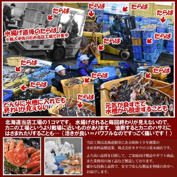 かに カニ 蟹  タラバガニ 脚 大 1kg お取り寄せ 夏カニ|kitauroko|04