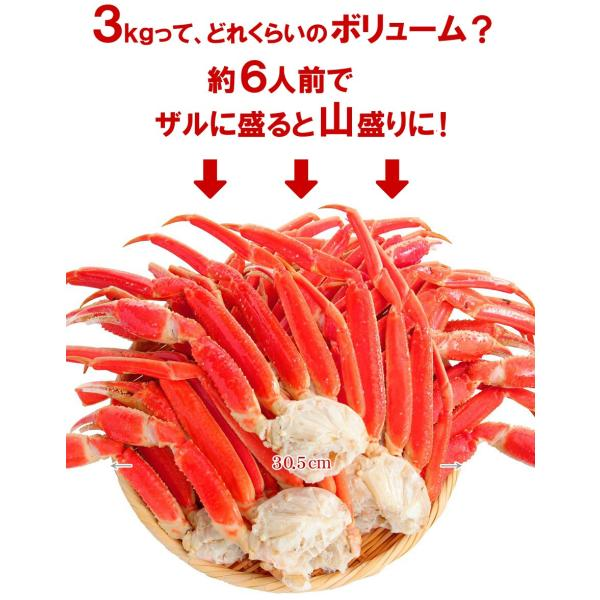 カニ かに 蟹 ズワイガニ ずわいがに 足 メガ盛  3kg|kitauroko|06