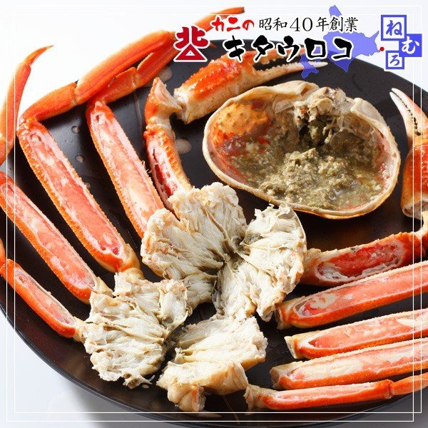 カニ かに 蟹 ズワイガニ ずわいがに 姿 2-4尾入 2kg 送料無料 お取り寄せ 夏カニ|kitauroko|03