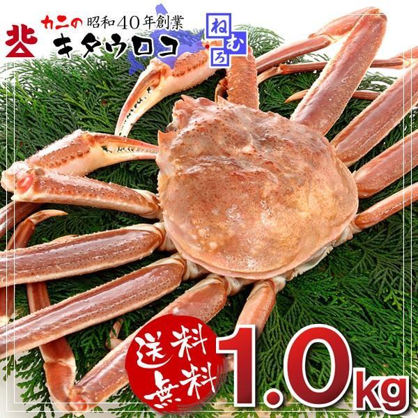 カニ かに 蟹 特大 生ずわいがに姿1尾×1kg前後入 送料無料 お取り寄せ グルメ|kitauroko|02