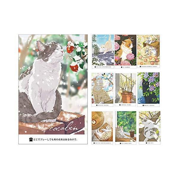 猫の絵はがき12枚 猫はがき はがき箋 かわいい 私製 はがき絵葉書 凄く可愛い 窓包装 cat postcard set - 12 感謝カード