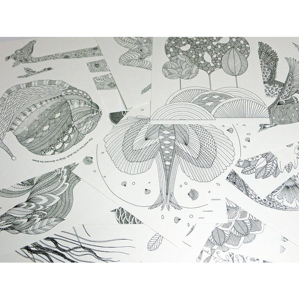 Animal Kingdom ぬりえ カード 動物たちのぬり絵 塗り絵 英語 30枚 30