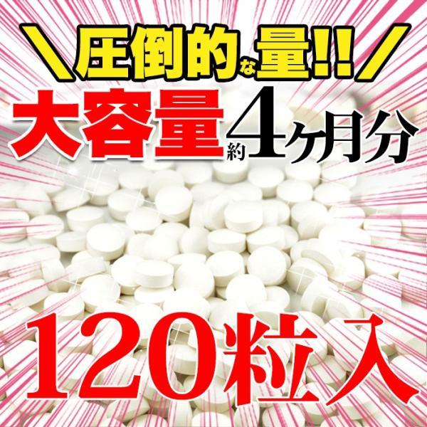 プロテオグリカン サプリメント サプリ 美容 コラーゲンとプラセンタ配合 送料無料   約4ヵ月分 〔120日分×1袋〕〔発送まで1~2週間〕 kiwami-honpo 02