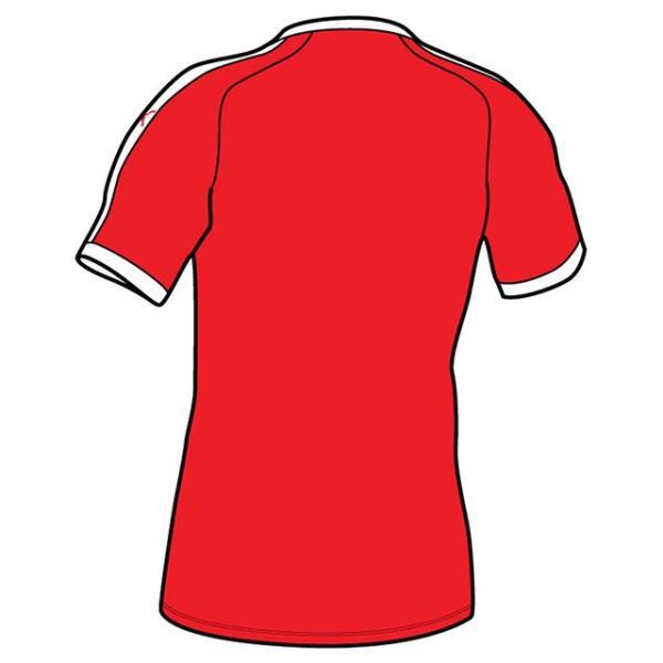 プーマ ゲームウェア LIGA ジュニア半袖ゲームシャツ/マーク付き|kiyospo|02