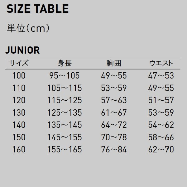 プーマ ゲームウェア LIGA ジュニア半袖ゲームシャツ/マーク付き|kiyospo|03