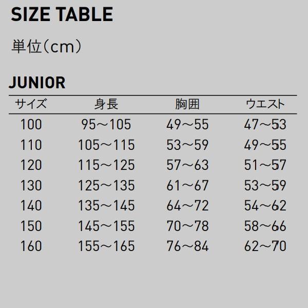 プーマ ユニフォーム CUP ジュニアゲームパンツ/マーク付き|kiyospo|03