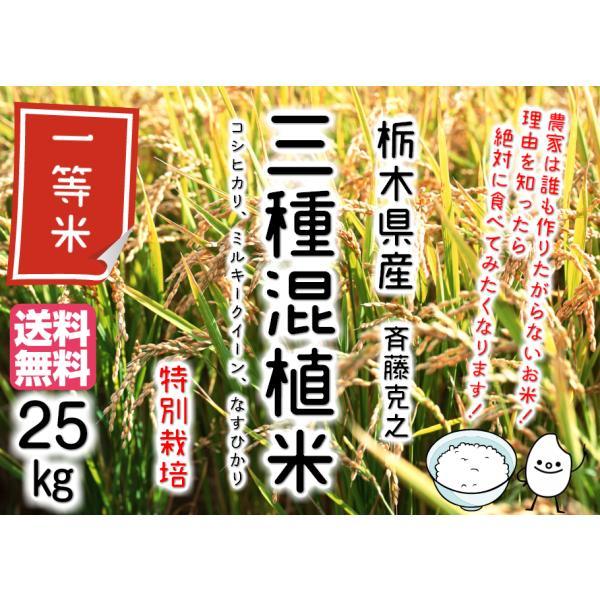 三種混植米(コシヒカリ、ミルキークイーン、ナスヒカリ) 特別栽培 25kg 【令和2年産】【栃木県産】斉藤克之 【送料無料】【他商品と同梱不可】