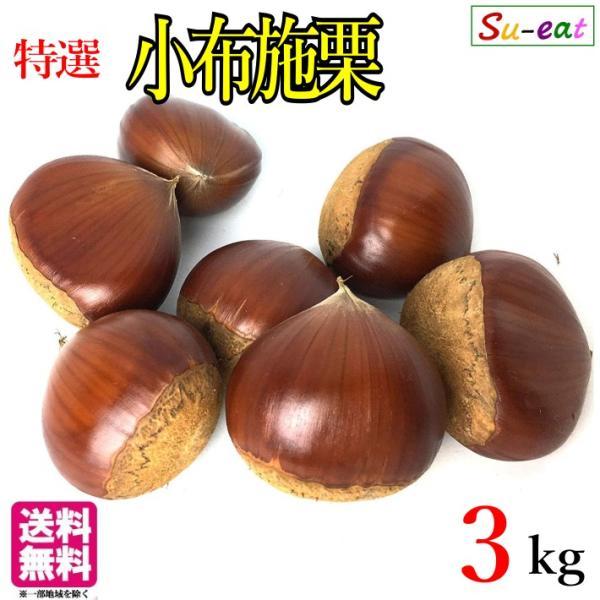 10月上旬〜中旬発送 特選  小布施栗  3キロ