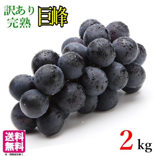 10月上旬 巨峰  種無し ぶどう 訳あり 2キロ  長野県産 レビューを書いたら200円クーポン
