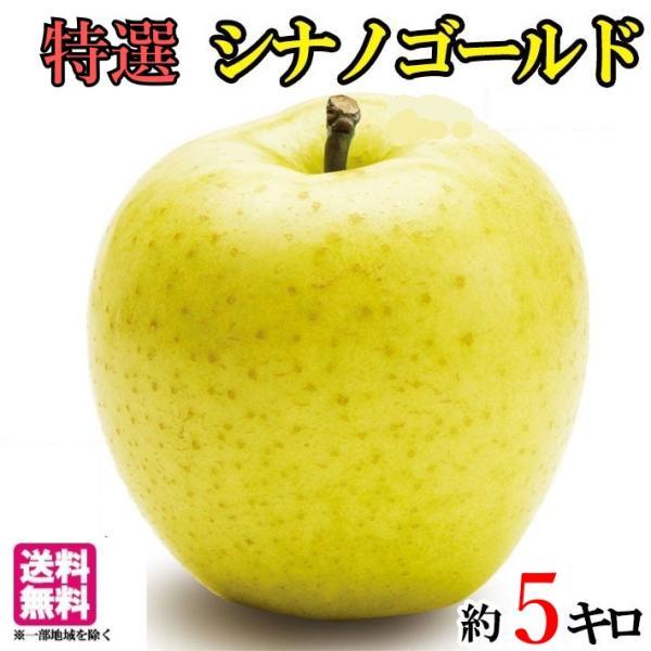 特選  シナノゴールド りんご  減農薬 長野県産  5キロ レビューを書いたら200円クーポン