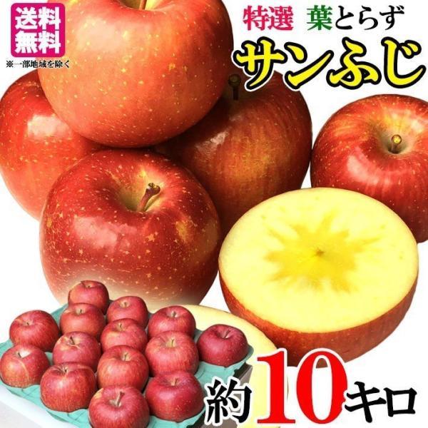 11月下旬発送 特選 贈答用  りんご サンふじ 減農薬 長野県産 10キロ レビューを書いたら200円クーポン