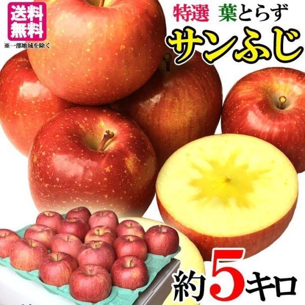 11月下旬発送 特選 贈答 りんご サンふじ 減農薬 長野県産 5キロ レビューを書いたら200円クーポン